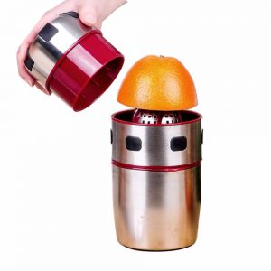Stainless Steel Orange & Lemon Juicer